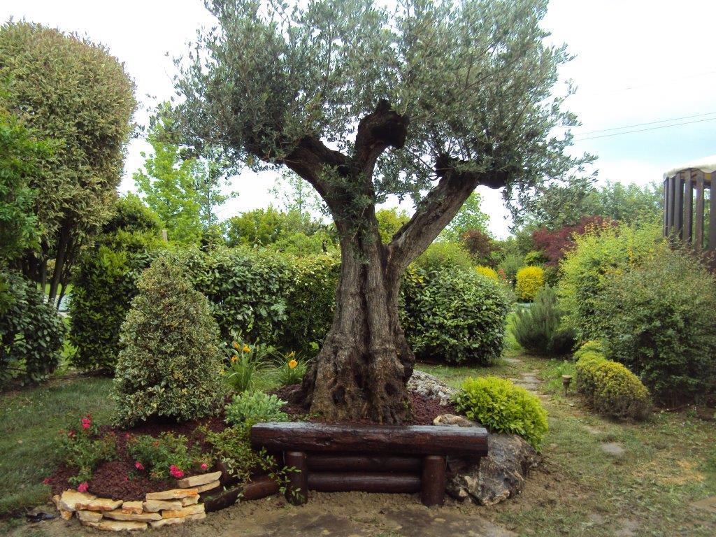 Excellent creare giardini with creare giardini for Accessori giardino giapponese